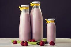 果子牛奶 从自然牛奶和草莓的酸奶 Spoo 免版税库存图片
