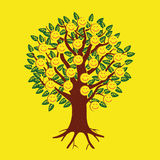 以果子的形式微笑的意思号在树 免版税库存图片