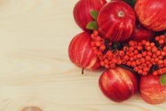 从果子的秋季构成 苹果和花楸浆果与叶子 木背景 秋天概念 免版税图库摄影