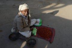 果子的街边小贩在印度 免版税库存图片