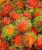 果子红毛丹泰国 免版税图库摄影