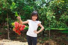 果子红毛丹 免版税库存照片