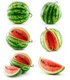 果子绿色查出的成熟集西瓜 免版税库存照片
