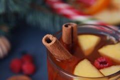 果子茶热的冬天饮料用肉桂条 季节性温暖在深蓝背景的饮料 关闭桂香 库存照片