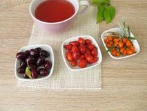 果子茶用欧亚山茱萸、玫瑰果和海鼠李 库存照片