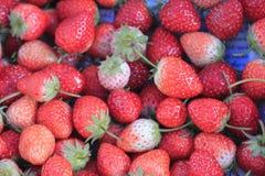果子草莓 免版税图库摄影
