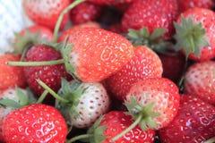 果子草莓 库存照片