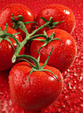 果子蕃茄 库存图片