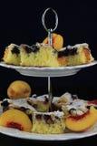 果子蛋糕 图库摄影