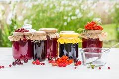 果子蜜饯和未加工的草莓、樱桃、花揪和红浆果莓果在一张白色木桌上 免版税库存图片