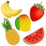 果子被设置的传染媒介例证 免版税库存图片
