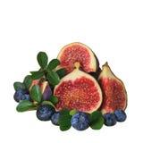 果子装饰用在白色隔绝的无花果 免版税库存照片