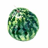 果子西瓜手拉的水彩绘画在白色背景的 光栅例证 免版税库存照片