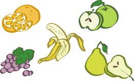 果子集 风格化颜色图画 向量例证