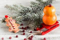 果子雪人用圣诞节曲奇饼 免版税库存图片