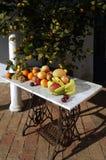 果子静物画与外面阳光的, 库存照片