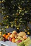 果子静物画与阳光的, 免版税库存照片