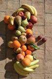 果子静物画与阳光的 免版税库存照片