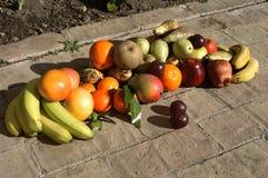果子静物画与阳光的 库存照片