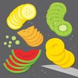 果子食物厨师香蕉葡萄猕猴桃菠萝西瓜柿子新片断切片动画片传染媒介 免版税图库摄影