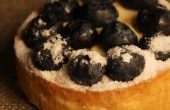 果子馅饼特写镜头用蓝莓 免版税库存图片