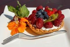 果子馅饼用乳酪奶油和木头莓果 免版税图库摄影