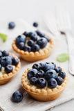 果子馅饼用在灰色葡萄酒背景的蓝莓、越桔、乳清干酪和蜂蜜糖浆 可口点心 库存图片