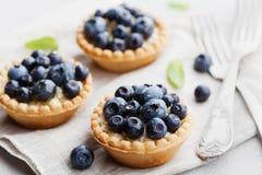 果子馅饼用在葡萄酒背景的蓝莓、越桔、乳清干酪和蜂蜜糖浆 可口点心 图库摄影