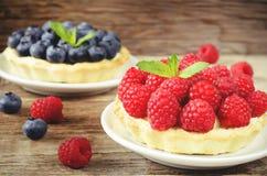 果子馅饼用莓和蓝莓 库存照片