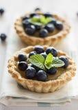 果子馅饼用蓝莓 图库摄影