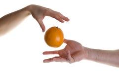 果子魔术 免版税库存图片