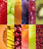 果子 免版税库存图片