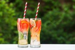 果子mojito两块玻璃  免版税库存图片