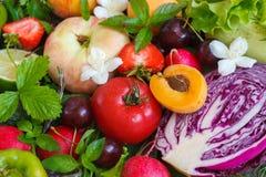 结果实夏天蔬菜 免版税库存图片