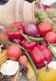 结果实季节性蔬菜 免版税库存照片