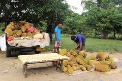 水果摊在斯里兰卡 库存照片