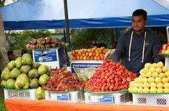 水果摊在Usaquen跳蚤市场上 免版税库存照片