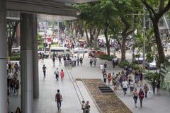 果树园路新加坡 免版税图库摄影