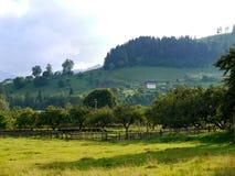 果树园,菜园,一座山的绿色倾斜的房子与一个具球果森林的在多云天空下 地方  免版税库存图片