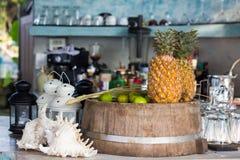 果汁原材料菠萝和柠檬 免版税库存照片