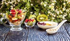 水果沙拉特写镜头用莓果、酸奶和格兰诺拉麦片在玻璃弓 免版税库存照片