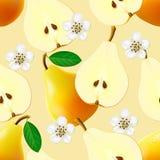 水果的无缝的样式用梨 库存图片