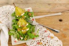 水果的沙拉开胃菜 库存图片
