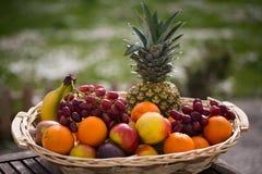 水果篮用混杂的果子,有绿色背景 免版税库存照片