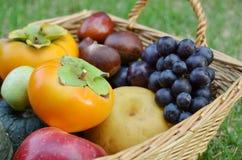 水果篮 库存图片