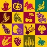 果菜类 向量例证