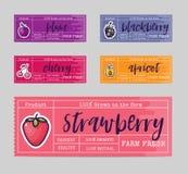 果酱包装设计,为夏天和秋天、黑莓,李子,樱桃,草莓,杏子果子和莓果  皇族释放例证