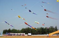 果阿国际风筝节日 图库摄影