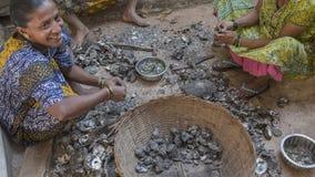"""果阿,印度†""""DEC, 2016年:在f以后的印地安妇女清洁淡菜 免版税图库摄影"""