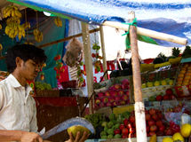 果阿,印度- 2016年12月16日:路旁果子供营商一个绿色椰子为消耗量做准备 免版税库存图片